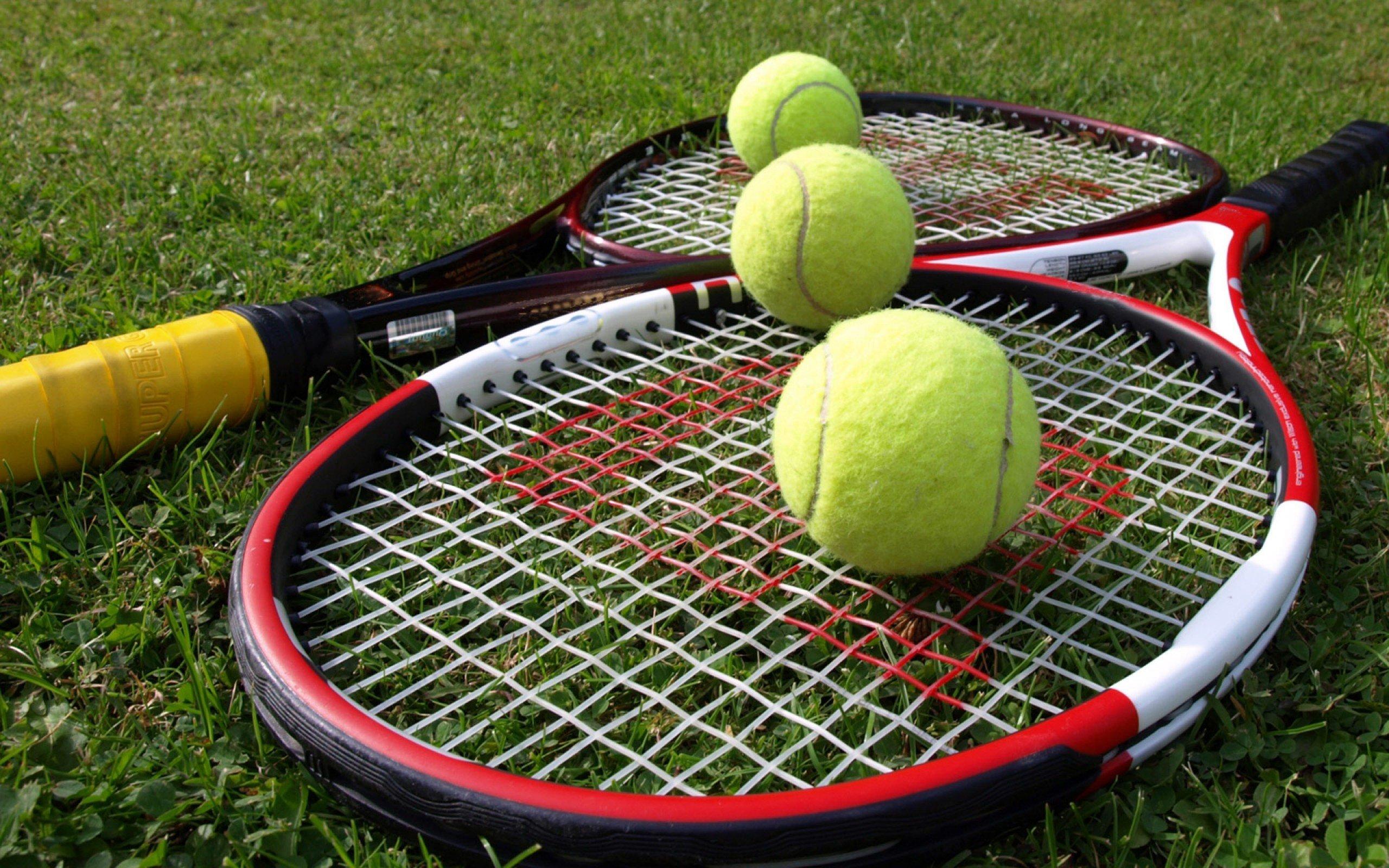 Ставки на матч Родина – Бертенс, прогноз на теннис от 21.09.2018